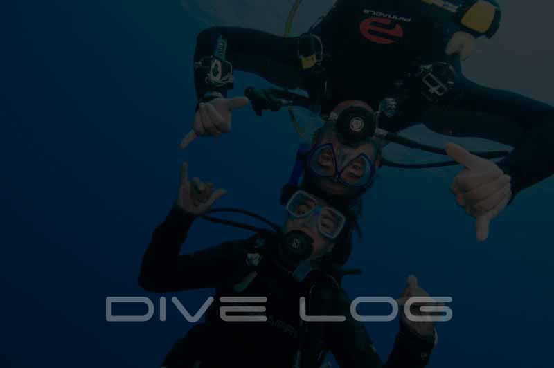Dive Log Featured