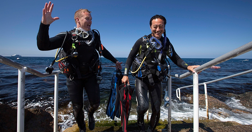 two divers emerging from the water